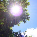 熱中症とは何か?簡単に説明します!熱射病や日射病との違いや予防、対処法も!