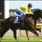 牝馬ウオッカの蹄葉炎とは?原因や症状や治療法について。競走馬の復帰は難しい?